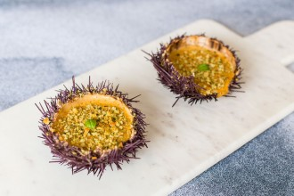 Sea urchin gratin
